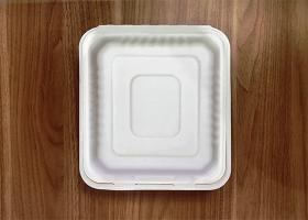 泰国工厂大量现货供应:纸浆模塑餐具;8寸三格锁盒 型号1