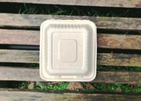 泰国工厂大量现货供应:纸浆模塑餐具; 9寸锁盒 型号2